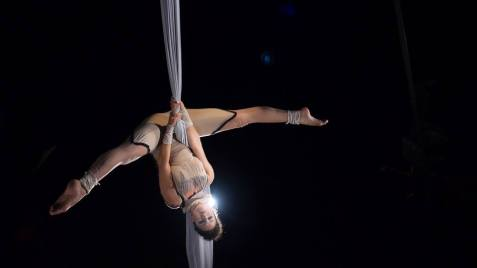 Aerial Silk Act with Vintage Costume