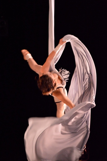 Aerial Silks Act with Vintage Costume